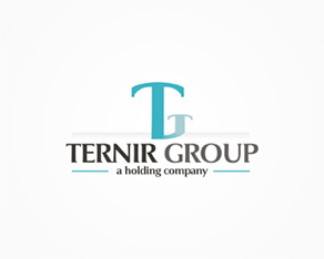 T Group, group, corporation, developing, large infrastructure, business, logo, logos, logo design by Alex Tass