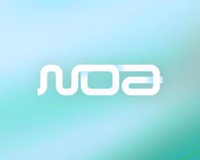 """""""noa,"""